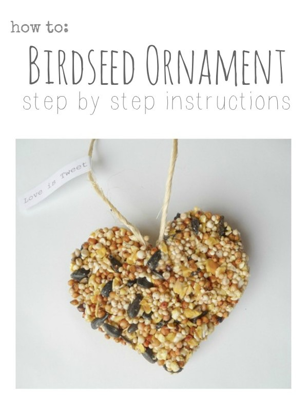 Bargain hoot spend wisely give cheerfully diy birdseed ornament solutioingenieria Image collections